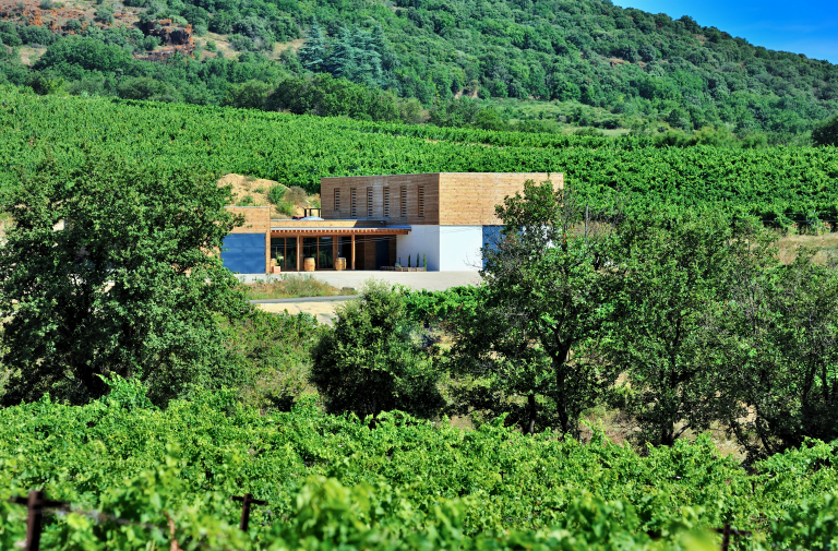 WINE ESTATE: DOMAINE ALLEGRIA
